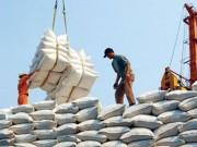"""Thị trường - Tiêu dùng - Kinh doanh xuất khẩu gạo được """"cởi trói"""""""