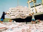 Thị trường - Tiêu dùng - Muốn bán gạo vẫn phải sang ...Singapore, Campuchia?