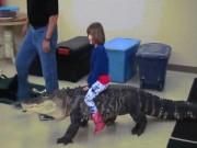 Thế giới - Bé gái 7 tuổi cưỡi cá sấu khổng lồ gây sốt mạng
