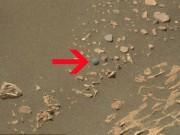 Phi thường - kỳ quặc - Phát hiện viên bi ve trên sao Hỏa?