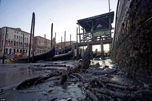 Venice- thành phố lãng mạn nhất châu âu sắp biến mất - 1