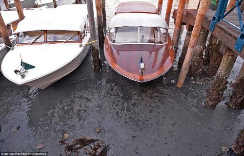 Venice- thành phố lãng mạn nhất châu âu sắp biến mất - 4