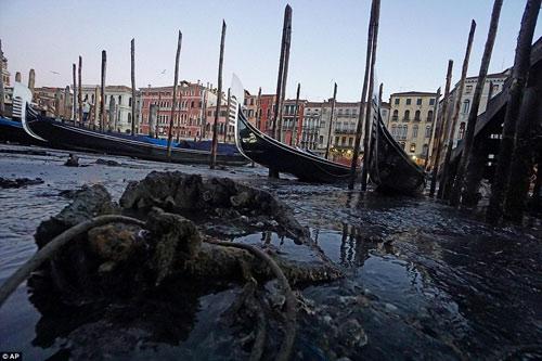 Venice- thành phố lãng mạn nhất châu âu sắp biến mất - 10