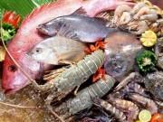 Thị trường - Tiêu dùng - Thủy hải sản tồn dư hóa chất: Châu Âu trả về, không cách gì loại bỏ được