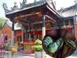 Du lịch - Du khách khóc thét khi đến ngôi đền toàn rắn độc