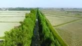 Xuân Lai, ngôi làng thổi hồn cho tre Việt