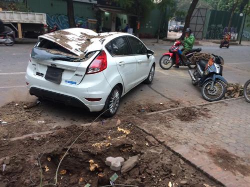 Hà Nội: Cây cổ thụ bật gốc đè ô tô bẹp dúm - 2