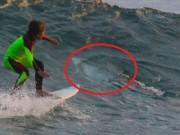Thế giới - Bé trai lướt sóng cạnh cá mập trắng 3 mét mà không biết