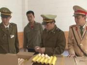 An ninh Xã hội - Bắt giữ gần 40 nghìn quả trứng gà Trung Quốc nhập lậu