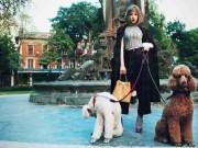 """Thời trang - Chi Pu sexy """"hết nấc"""" dắt cún cưng ngàn USD dạo phố Xuân"""