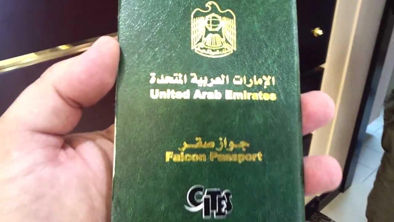 Hộ chiếu của chim ưng do UAE cấp.