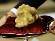 Ẩm thực - 10 món ăn đắt đỏ nhất thế giới