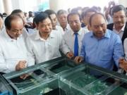 Thị trường - Tiêu dùng - Thủ tướng: Đưa Việt Nam thành công xưởng tôm của thế giới
