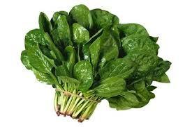 Những thực phẩm đặc biệt tốt cho phụ nữ tuổi mãn kinh - 2