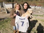 Bóng đá - Ronaldo hào phóng, cứu sống 80 chú chó