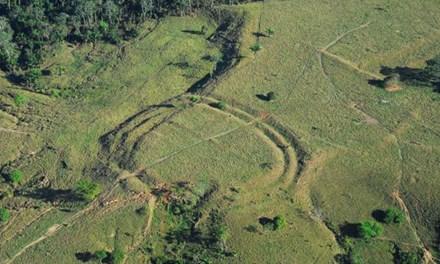 Phát hiện hàng trăm hình vẽ 2000 năm tuổi trong rừng amazon - 1