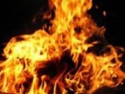 An ninh Xã hội - Vì con gà, tạt xăng lên người chị rồi châm lửa đốt