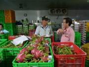 Thị trường - Tiêu dùng - Thanh long Việt bán tại Mỹ giá 180.000 đồng/kg