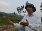 """Vĩnh Phúc dừng chủ trương phá rừng xây  """" siêu nghĩa trang """""""