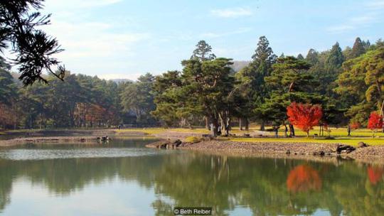 Lạc giữa ngôi làng thần tiên ở Nhật Bản - 1