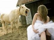 Tranh vui - Ủ uôi, ảnh cưới gì mà BUỒN CƯỜI thế này!