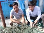 Điều tra hiện tượng  bùn lạ  như keo mắc lưới ngư dân Quảng Trị