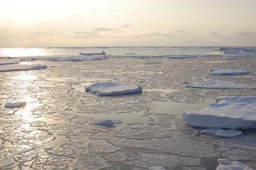 Dự án táo bạo 500 tỷ USD có thể cứu Trái đất - ảnh 1
