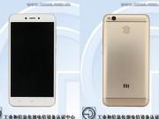 Dế  giá rẻ Xiaomi Redmi 5 rò rỉ cấu hình