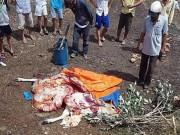 An ninh Xã hội - Bắt quả tang cặp tình nhân trộm bò rồi xẻ thịt tại chỗ