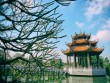 Ngắm ngôi chùa cổ có vẻ đẹp bất tử với thời gian