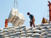 """Thị trường - Tiêu dùng - Lập đoàn xác minh vụ """"xin giấy phép xuất khẩu gạo mất 20.000 USD"""""""