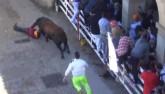 Thủng nội tạng trong lễ hội chạy với bò tót ở Tây Ban Nha