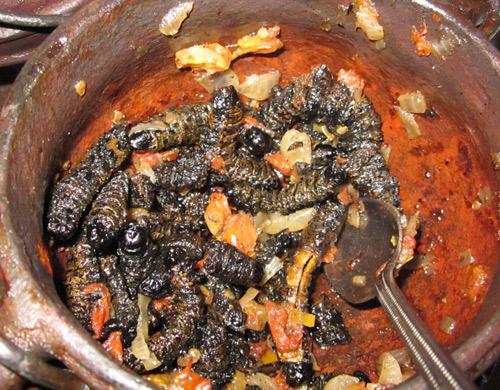 Nổi da gà với snack sâu giòn - đặc sản kinh dị của Zimbabwe - 6