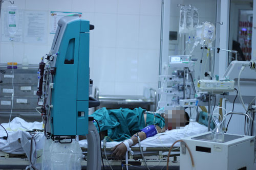 H5N1 bùng phát ở Nam Định, 70 người được giám sát chặt chẽ