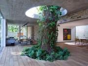 """Tài chính - Bất động sản - Khi thiên nhiên """"bẻ cong"""" kiến trúc"""