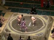 Thể thao - Hy hữu: Võ sỹ Sumo bị hạ knock-out như trong UFC