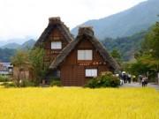Du lịch - Say đắm cảnh 4 mùa tại làng cổ đẹp nhất Nhật Bản