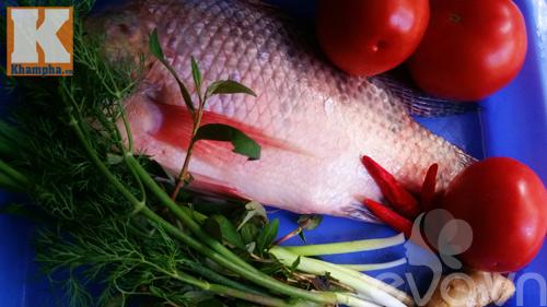 Cá rô phi sốt cà chua ngon cơm trong mọi thời tiết - 1