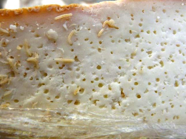 Phát hoảng với món phô mai có hàng nghìn con dòi ngọ nguậy - 1
