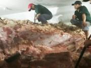 Thị trường - Tiêu dùng - Hơn 30 tấn thịt heo không nguồn gốc suýt ra thị trường