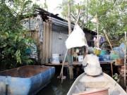 Tin tức trong ngày - Người đàn ông bỏ bạc triệu thuê ốc đảo giữa Sài Gòn, sống đời cô độc