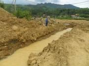 Tin tức trong ngày - Đập chứa chất thải trên núi bị vỡ, cá chết hàng loạt