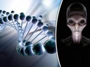 Chuyên gia: Con người do người ngoài hành tinh tạo nên?