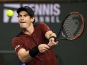 Tin HOT thể thao 14/3: Murray gặp thêm ác mộng ở Indian Wells