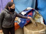 Hà Tĩnh: Gần 1.000 tấn sứa bốc mùi hôi thối nhưng chưa thể tiêu hủy