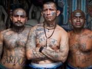 Thế giới - Hé lộ cuộc sống bên trong băng đảng tàn bạo nhất thế giới