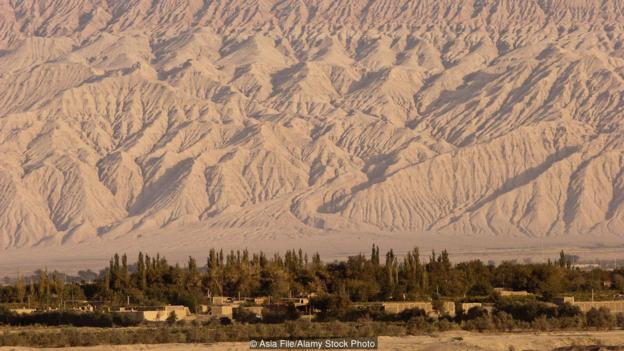Sức sống kỳ diệu của ốc đảo giữa sa mạc ở TQ - 3