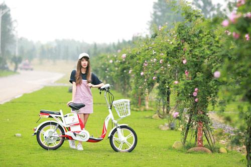 Lần đầu tiên Việt Nam có thương hiệu Việt sản xuất xe gắn động cơ hai bánh - ảnh 3