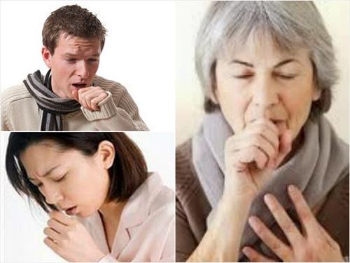 Phát hiện cây thuốc quý trong điều trị đau họng, khản tiếng, mất tiếng - ảnh 1