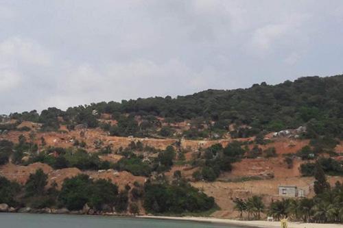 Phạt chủ đầu tư dự án đào xới bán đảo Sơn Trà 40 triệu - ảnh 2